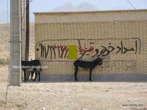 http://hamedfarajzadeh.persiangig.com/picax/pic%20%28388%29.jpg